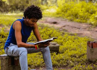 3-Books-to-Help-You-Train-Your-Brain-and-Learn-More-Creatively-on-nextreading-online